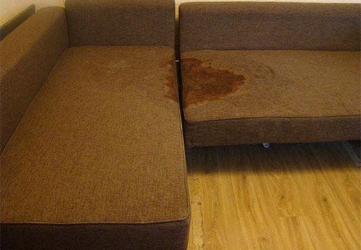 Лужа от мочи на диване